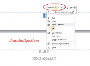 cara mengatur ukuran dan jenis font nomor halaman ms word 1