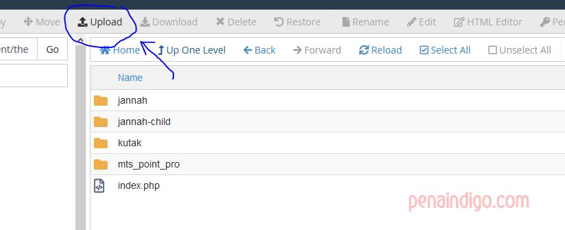 cara instal theme melalui cpanel 1